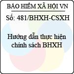 Công văn 481/BHXH-CSXH hướng dẫn thực hiện chính sách bảo hiểm xã hội