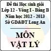 Đề thi học sinh giỏi tỉnh Long An lớp 12 vòng 1 năm 2012 - 2013 môn Vật lý (Bảng B)