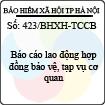 Công văn 423/BHXH-TCCB