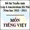 Đề thi tuyển sinh vào lớp 6 Hà Nội Amsterdam năm học 2013 - 2014 môn Tiếng Việt