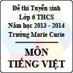 Đề thi tuyển sinh vào lớp 6 trường Marie Curie năm học 2013 - 2014 môn Tiếng Việt