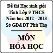Đề thi học sinh giỏi lớp 9 THCS tỉnh Phú Thọ năm 2012 - 2013 môn Hóa học