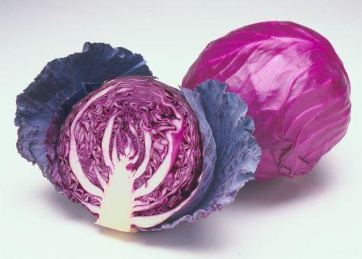 Những lý do bạn nên ăn bắp cải tím thường xuyên