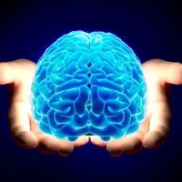 Trắc nghiệm IQ: Bạn có thông minh không?