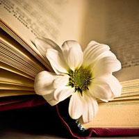Tinh thần thơ mới qua bài Một thời đại trong thi ca của Hoài Thanh