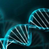 Bài tập liên kết gen và hoán vị gen