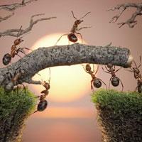 Nghị luận xã hội: Chiến thắng bản thân là chiến thắng hiển hách nhất