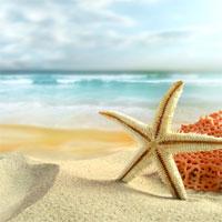 Giáo án mầm non đề tài: Bé và biển