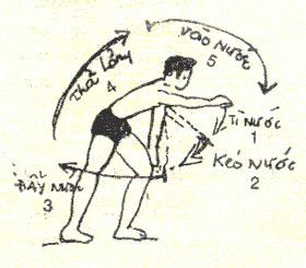 Cách học bơi sải đúng cách, đúng kỹ thuật
