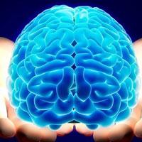 """Trắc nghiệm tư duy logic """"xoắn não"""""""
