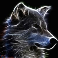 Loài vật nào ngủ quên trong tâm hồn bạn?