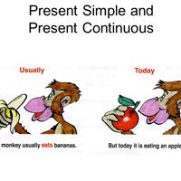 Tự học Tiếng Anh bài 7: So sánh Thì Hiện tại đơn và Thì Hiện tại Tiếp diễn