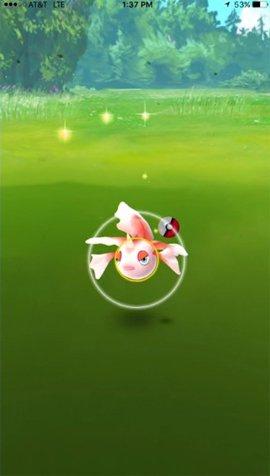 Mẹo bắt Pokemon trong Pokemon Go