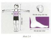 Bài tập môn Vật lý lớp 6