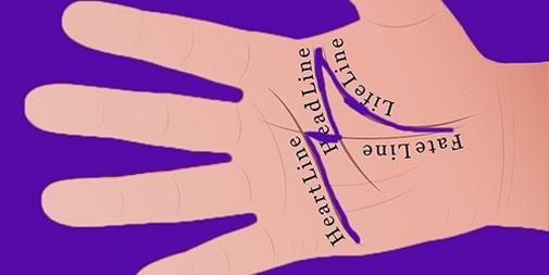 Xem bàn tay hình chữ M