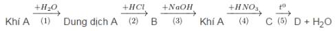 Giải bài tập trang 37, 38 SGK Hóa học lớp 11