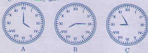 Giải bài tập trang 121, 122 SGK Toán 3