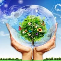 Nghị định 19/2015/NĐ-CP hướng dẫn Luật Bảo vệ môi trường