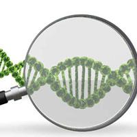 Bài tập Sinh học lớp 10: So sánh ADN và ARN về cấu tạo, cấu trúc và chức năng