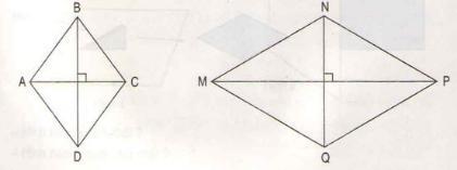 Giải bài tập trang 142, 143 SGK Toán 4