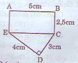 Giải bài tập trang 169, 170 SGK Toán 5