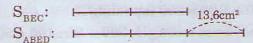 Giải bài tập trang 171 SGK Toán 5