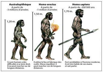 Lý thuyết Lịch sử 10 bài 1: Sự xuất hiện loài người và bầy người nguyên thuỷ