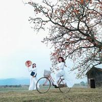 Câu hỏi trắc nghiệm môn Cơ sở văn hóa Việt Nam: Tiến trình văn hóa Việt Nam