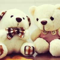 Tả con gấu bông yêu thích của em