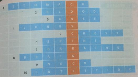Giải bài tập SBT tiếng Anh lớp 10 Unit 2