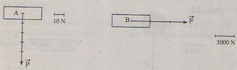 Giải bài tập Vật lý bài Biểu diễn lực