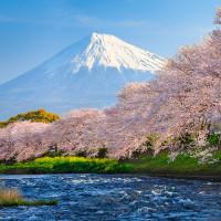 Bảng chữ cái tiếng Nhật Bản và cách đọc