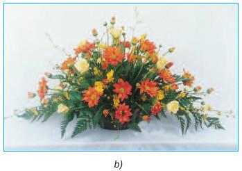 Giải bài tập SGK Công nghệ lớp 6 bài 14: Thực hành cắm hoa