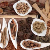 Mẫu số 16/BHYT: Danh mục thuốc chế phẩm y học cổ truyền thanh toán BHYT