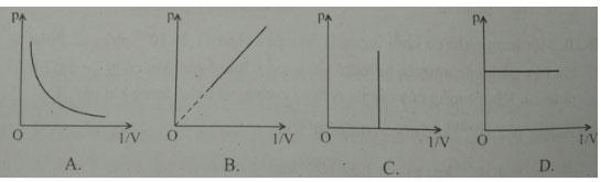 Trắc nghiệm Vật lý 10 chương 5