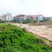 Mẫu tờ trình đề nghị điều chỉnh cơ cấu sử dụng đất