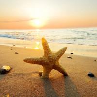 Bài viết tiếng Anh về kì nghỉ hè ở biển