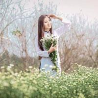 Giáo án Công nghệ 6 bài 14: Thực hành: Cắm hoa (Tiết 1)