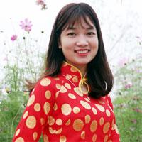 Soạn văn bài: Tổng kết phần tiếng Việt - Lịch sử, đặc điểm loại hình và các phong cách ngôn ngữ