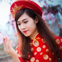 Soạn văn bài: Nguyễn Đình Chiểu, ngôi sao sáng trong văn nghệ của dân tộc