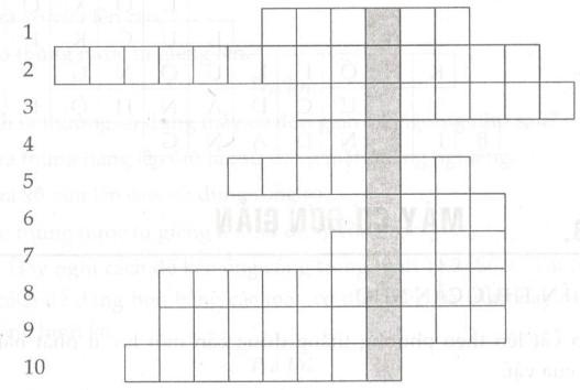Giải bài tập SBT Vật lý lớp 6 bài 11: Khối lượng riêng - Trọng lượng riêng