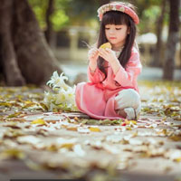 Giáo án Tin học 8: Ôn tập