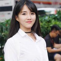 Dàn ý Thuyết minh về một tác giả văn học: Nguyễn Du