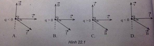 Vật lý 11 bài 22