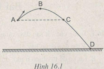 Giải bài tập SBT Vật lý lớp 8 bài 16: Cơ năng