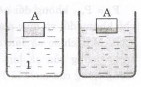 Giải bài tập SBT Vật lý lớp 8 bài 12: Sự nổi