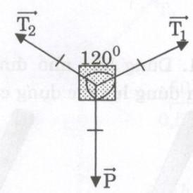Giải bài tập SBT Vật lý lớp 8 bài 4: Biểu diễn lực