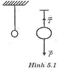 Giải bài tập SBT Vật lý lớp 8 bài 5: Sự cân bằng lực - Quán tính