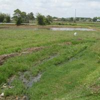 Bảng thống kê phiếu thu thập thông tin về thửa đất