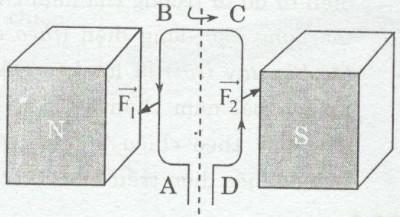 Giải bài tập SBT Vật lý lớp 9 bài 27: Lực điện từ